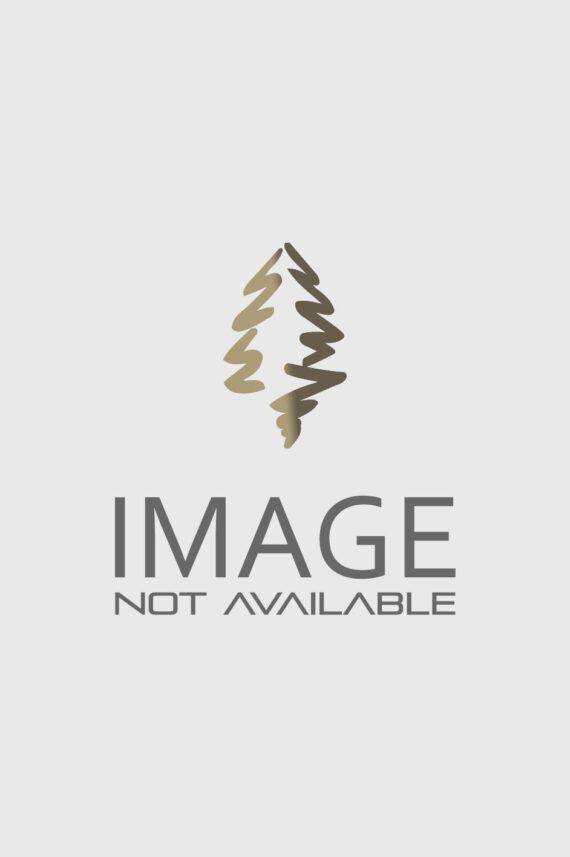 DWARF STRAWBERRY BUSH
