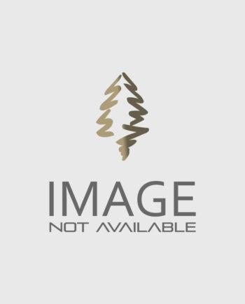 LILAC TREE BLOOMERANG